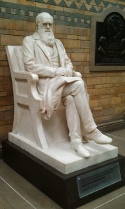 Charles Darwin (Natural History Museum)